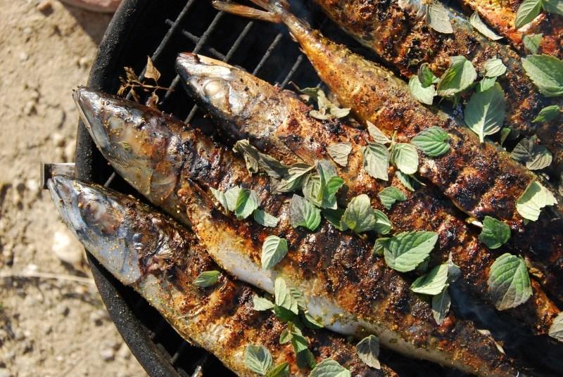 Grillowanie ryb – jakie ryby na grilla?
