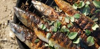 Grillowanie ryb – jakie ryby na grilla ? – Porady Grill360