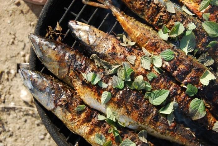 Grillowanie ryb – jakie ryby nagrilla ? – Porady Grill360