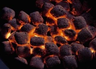 Na czym grillować… Brykiet, węgiel drzewny, a może drewno ?