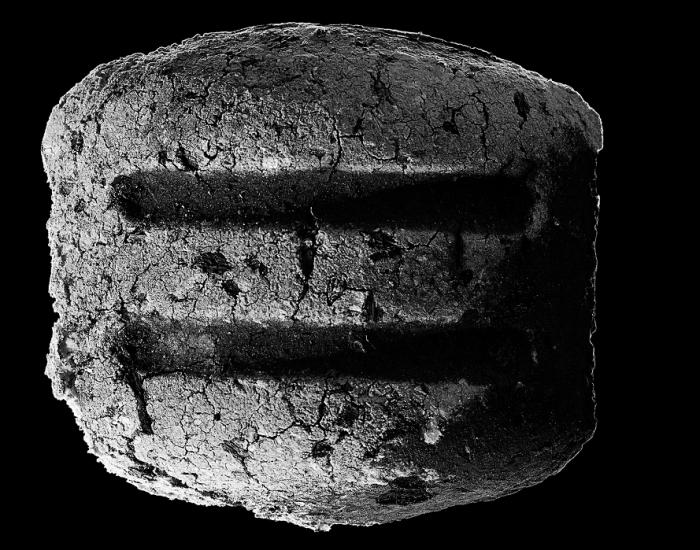 Idealny brykiet okiem grillmastera Michała Dobosza