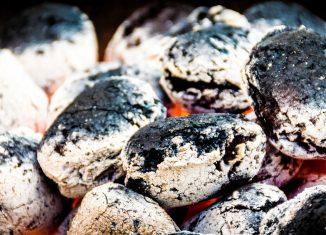 Co na grilla węglowego – brykiet czy węgiel drzewny?