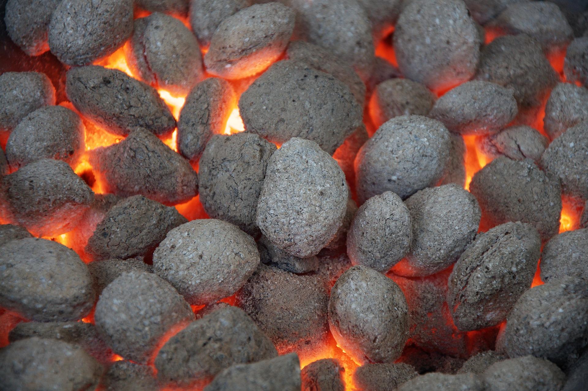grill węglowy a grill gazowy , grill360 , grill , grille ogrodowe