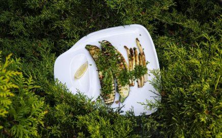 Grillowana cukinia i białe szparagi