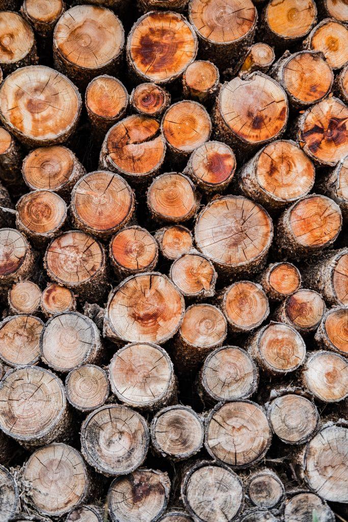 Jakie drewno do wędzenia pulled pork