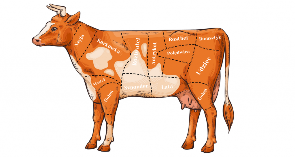 Podział wołowiny na steki
